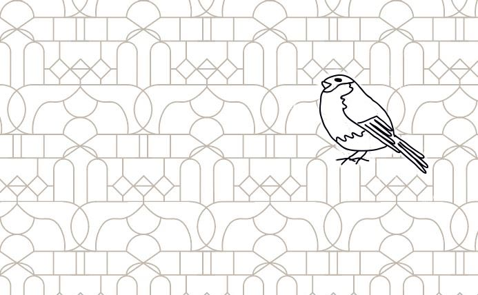 A Bird Cage Pattern